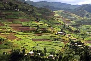 Colline del Ruanda
