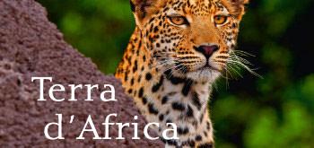 Copertina Libro Terra D'Africa