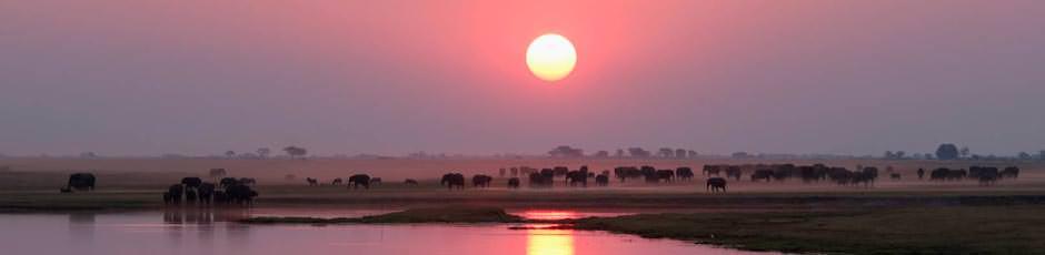 tramonto-chobe